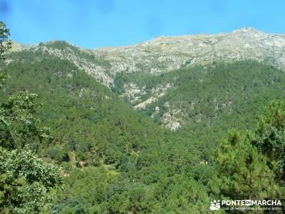Pinares Angostura, Piedralaves; montañismo madrid;senderismo guadarrama;viajes fines de semana